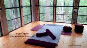 Thai Body Massage with Dianne Adams