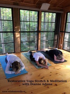 Restorative Yoga Stretch & Meditation with Thai Massage Tree House at Rural Rootz @ Restorative Yoga Stretch & Meditation | Wiarton | Ontario | Canada