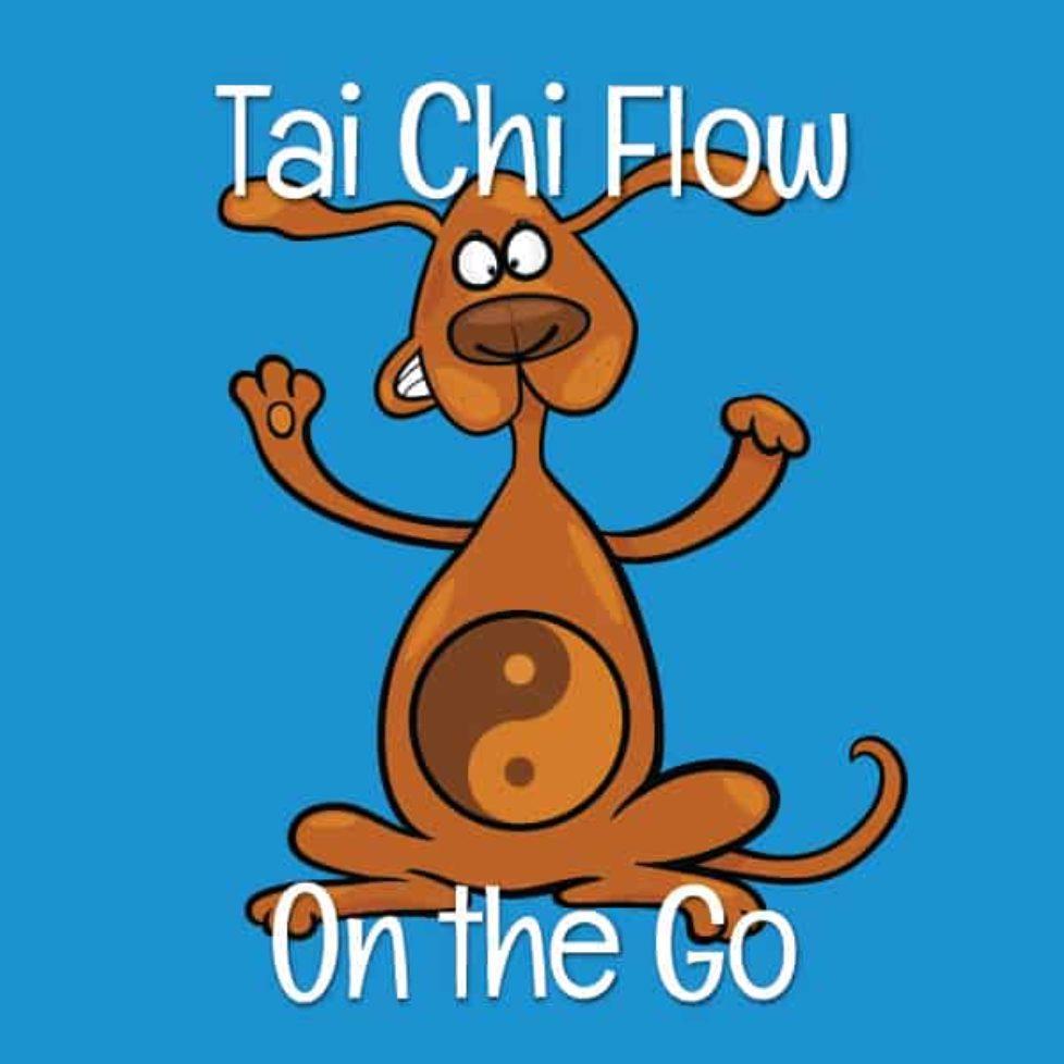 Tai chi flow image